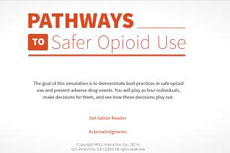 Pathways to Safer Opioid Use